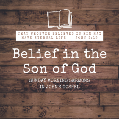 Belief in the Son of God: John